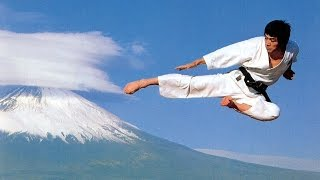 Shotokan Karate Kicks