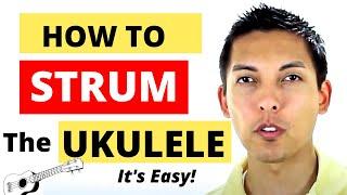 getlinkyoutube.com-How To Strum The Ukulele - EASY STRUMMING LESSON