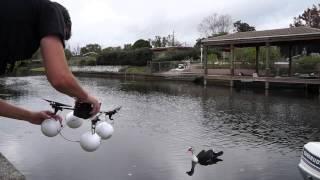 getlinkyoutube.com-Parrot AR Drone Water Take Off Fail