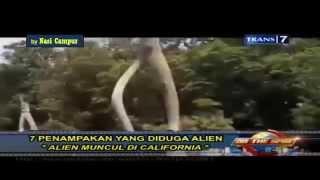getlinkyoutube.com-Kenyataan!! Penampakan Alien datang ke dunia