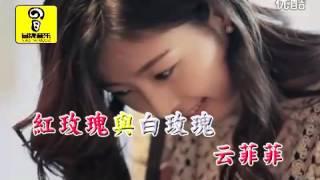 getlinkyoutube.com-云菲菲 - 红玫瑰與白玫瑰