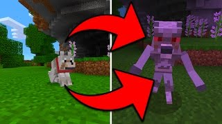 getlinkyoutube.com-More New Mobs in Minecraft Pocket Edition (Mythic Mobs Addon)