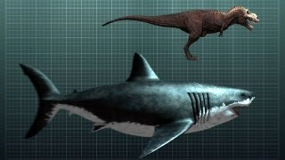 getlinkyoutube.com-The Nightmarish Megalodon | Sharkzilla -- Shark Week 2012