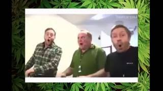 getlinkyoutube.com-High People Funny Videos [This why You don't do drugs]