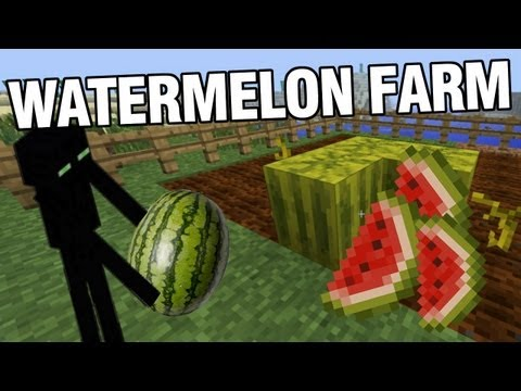 Minecraft - Watermelon Farm &amp; Enderman