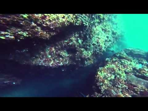 Jabut spearfishing trip lombok and sumbawa