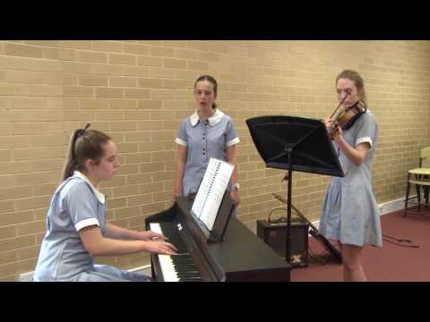 The Arts: Music - Above satisfactory - Years 9 and 10