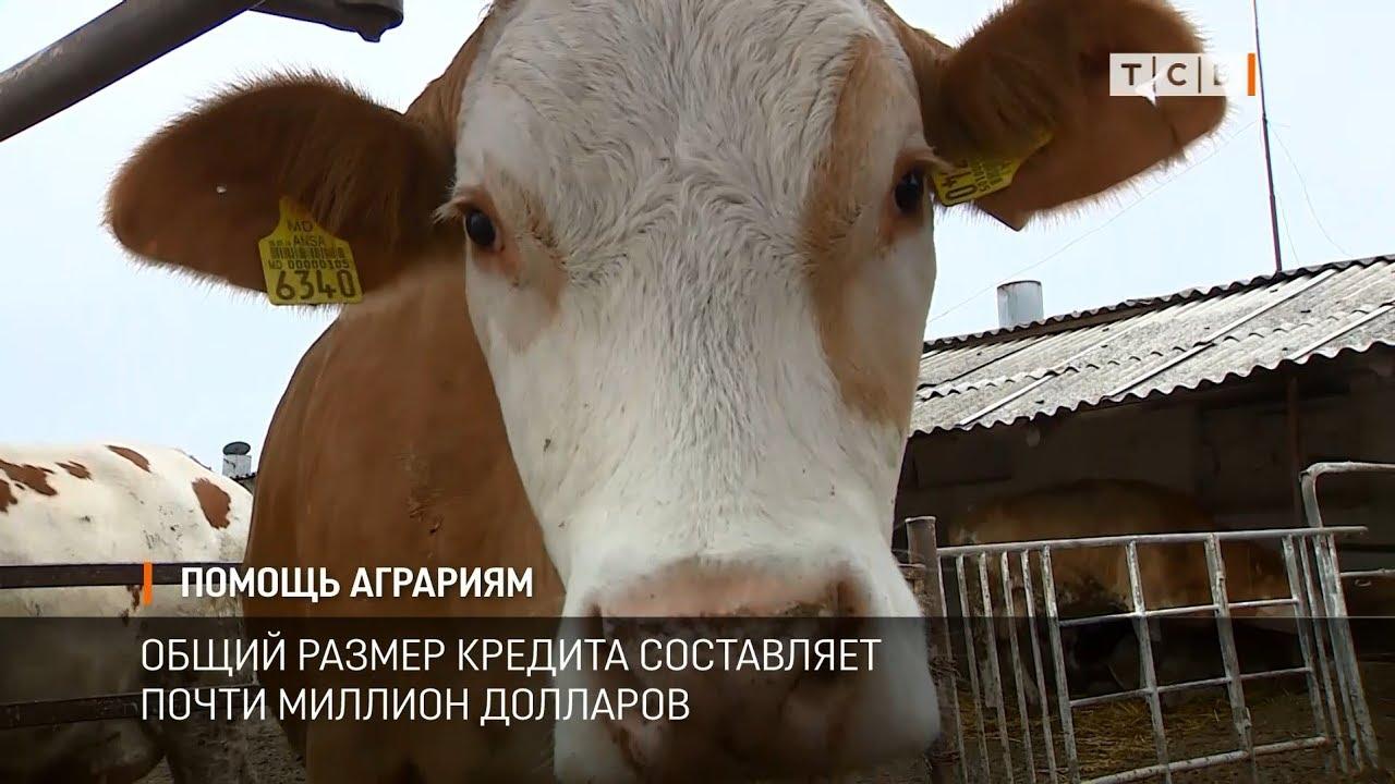 Помощь аграриям