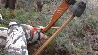 getlinkyoutube.com-Traditional Bow Hunting