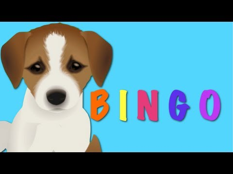 BINGO - Dog Song