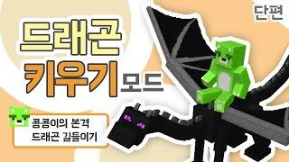 getlinkyoutube.com-[콩콩] 드래곤 한마리 분양해가세요. 마인크래프트 드래곤키우기모드 단편 Minecraft