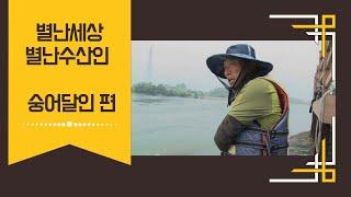 별난세상별난수산인  숭어달인 박동혁