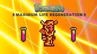 getlinkyoutube.com-Terraria 1.2.4 FASTEST LIFE REGEN ( heal in 30 seconds ) + Accessory glitch
