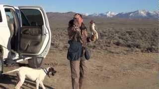 getlinkyoutube.com-Falconry trip to Wyoming