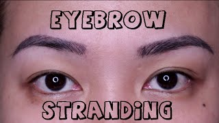 getlinkyoutube.com-Kilay Update: S3 EYEBROW STRANDING at Prettylooks