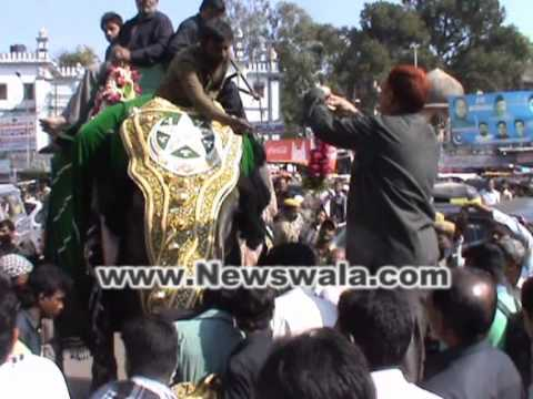 Newswala : Elephant Rajni on trail for Bibi Ka Alam procession on 10th Moharram