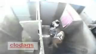 getlinkyoutube.com-화장실 뱀 몰래카메라
