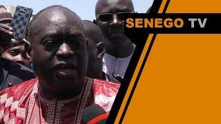 Senego TV  Affaire Bamba Fall et Khalifa Sall