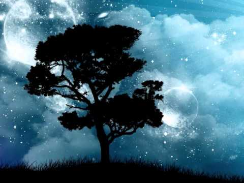 Pocket Full Of Stars de Nine Black Alps Letra y Video