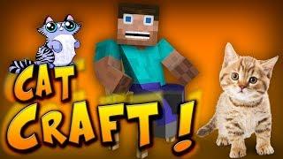 getlinkyoutube.com-ŚMIESZNE KOTY W MINECRAFT ?! - Cat Craft
