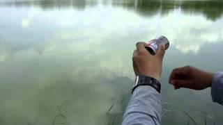 getlinkyoutube.com-ตกปลากับ โจ้ เจ้าพระยา ตอน ปลากระป๋อง
