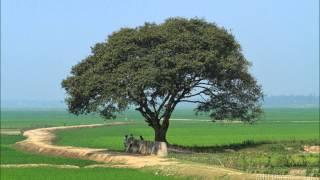 getlinkyoutube.com-Bangla waz by Maulana Jubaer Ahmed Ansari