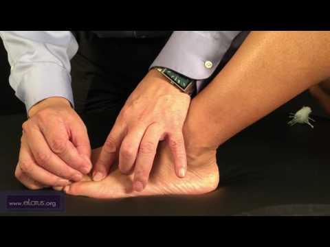 Liuwan (T 66.08), Shuiqu (T 66.09) [FRANÇAIS]: Points d'acupuncture Tung par le Dr Chuan-Min Wang