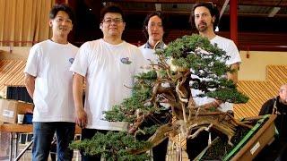 getlinkyoutube.com-Bonsai demo by the Kimura disciples