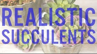 getlinkyoutube.com-Artificial Succulents