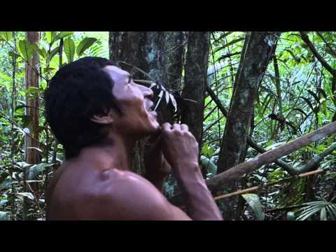 Sobreviviencia na Selva Amazonia Indio Tatuyo Amazonas Indian Jungle Amazon Brasil Brazil 6)