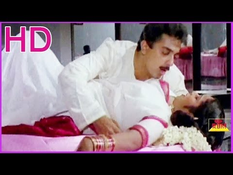 Tappu Chesta Pilladana - Kamal Hassan & Radhika Lovely Song - In Maa Inti Krishnudu Telugu Movie