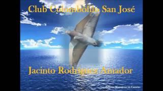 getlinkyoutube.com-Palomas mensajeras en Canarias. Homenaje Jacinto Rodriguez Amador.