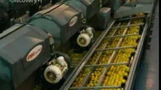 getlinkyoutube.com-How Orange Juice Is Made