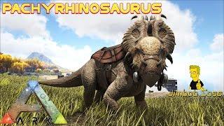 getlinkyoutube.com-ARK Pachyrhinosaurus Tame