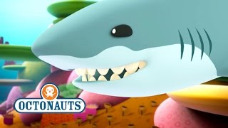 getlinkyoutube.com-Octonauts: Peso Is Chased By A Great White Shark