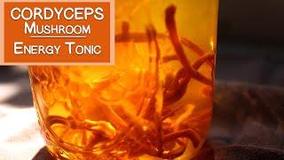 getlinkyoutube.com-Cordyceps Mushroom Benefits as an Energy Tonic