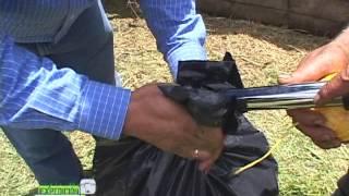 Proceso de Ensilaje o conservación de pasto - ABC Ganadero parte 7