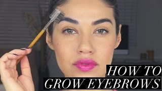HOW TO GROW YOUR EYEBROWS! | EMAN