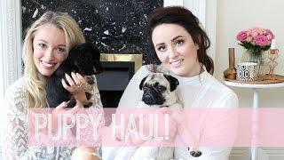 getlinkyoutube.com-Puppy Haul with Becca Rose!     Fashion Mumblr