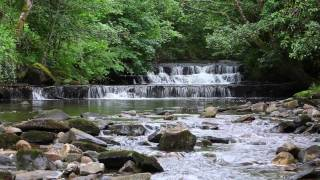 Sound of Nature with Classical Piano Music-Birds Singing & Waterfall Sounds