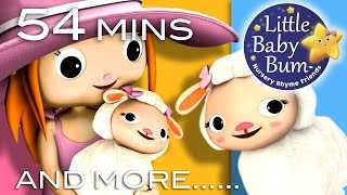 getlinkyoutube.com-Mary Had A Little Lamb   Plus Lots More Nursery Rhymes   54 Minutes Compilation from LittleBabyBum!