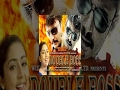 Double Boss Full Movie - Watch Free Full Length action Movie