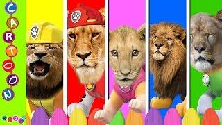 Paw Patrol lion Animal Finger Family Nursery Rhymes ◕‿◕ KidsF