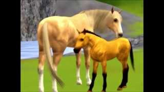 getlinkyoutube.com-Sims 3 Pets: Spirit; Stallion of the Cimarron