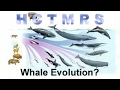 How Creationism Taught Me Real Science 55 Whale Evolution?