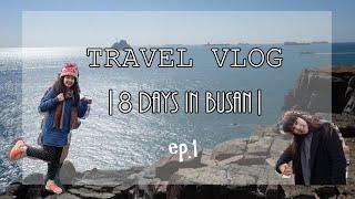 getlinkyoutube.com-TRAVEL VLOG | 8 Days in Busan | 我們去釜山2016 ep.1
