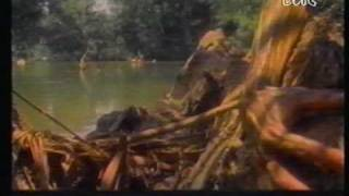 getlinkyoutube.com-Duran Duran a Roma 1987-part4