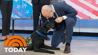 getlinkyoutube.com-TODAY Puppy Charlie Shows How He'd Get Help In An Emergency | TODAY