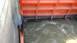 getlinkyoutube.com-ตกปลากับ โจ้ เจ้าพระยา ตอน วิถีชาวบ้าน ช้อนปลาหน้าประตูน้ำ