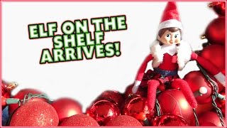 getlinkyoutube.com-😁THE ELF ON THE SHELF HAS ARRIVED!! 😁AYDAH GETS PINK EYE AND WE MAKE A GIANT WREATH 😁SMELLYBELLYTV